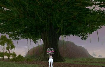この~木なんの木 気になる木~