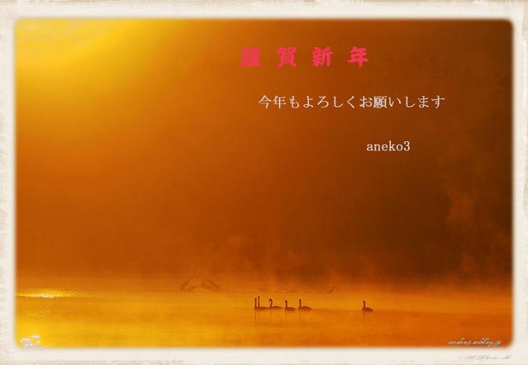081202DⅡ1_120ps2_nasiro_s