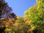 秋を満喫・・・