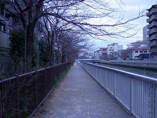 sanpo_01.jpg