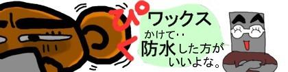 20060911082550.jpg
