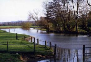 テムズ河と牧場