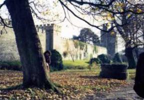 ウエールズの城4