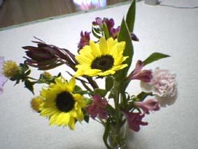 birthdayflower.jpg