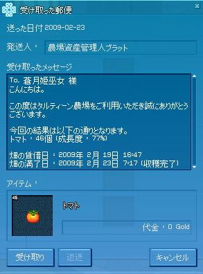 tomato_200902.jpg