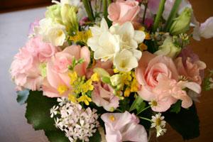 flower0227-2