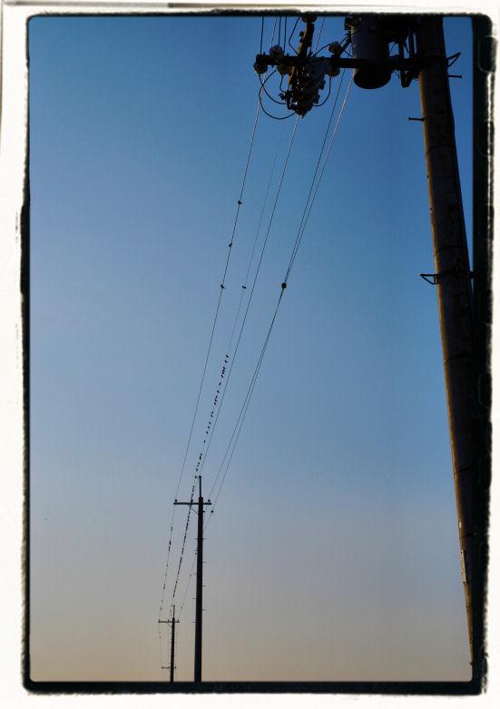 20101111_134a.jpg