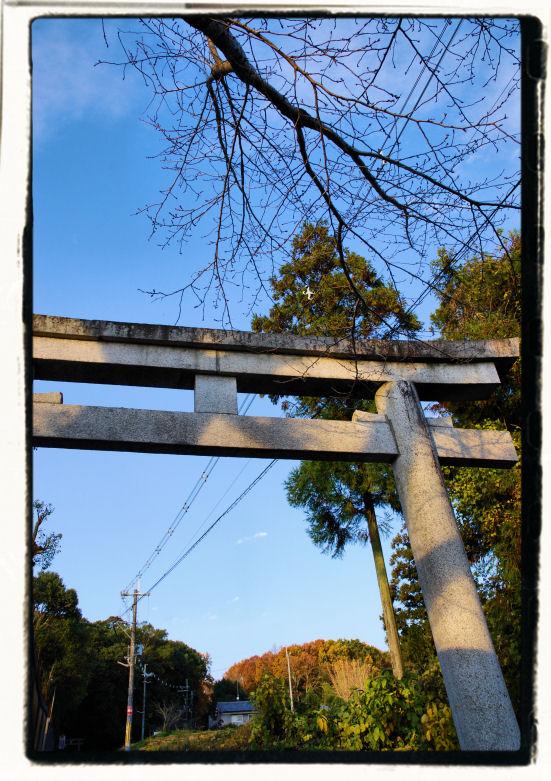 20101202_128a.jpg