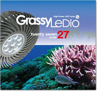 Grassy-LeDio-27.jpg