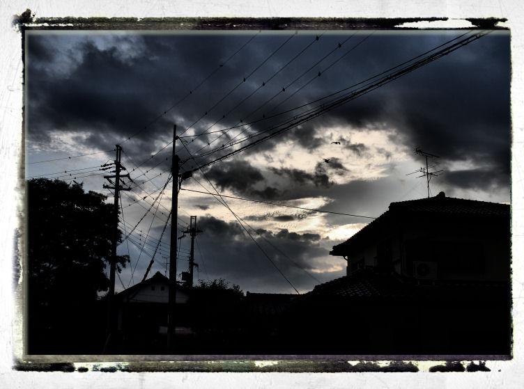 inakamichi13.jpg
