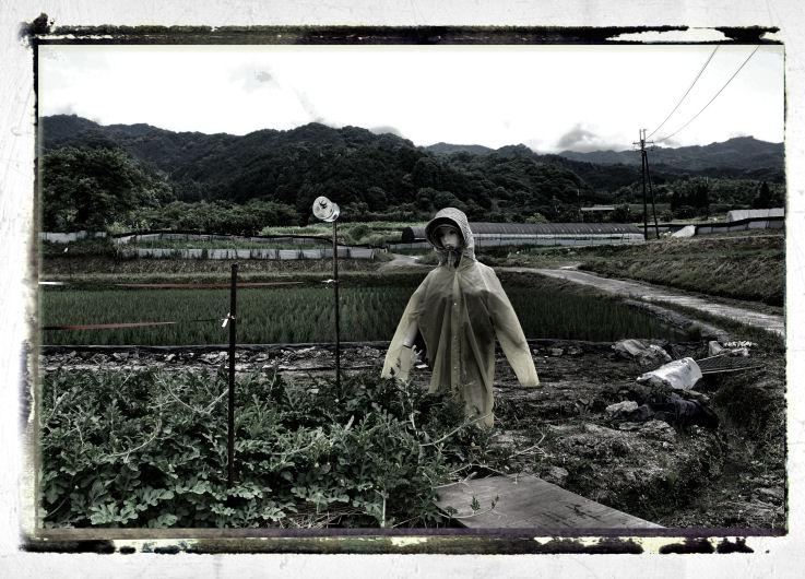 inakamichi4.jpg