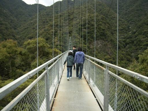 Bridge-Aya5.jpg