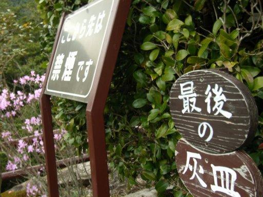 綾の照葉樹林にて