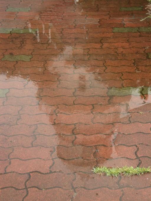 RainyTime67-2.jpg