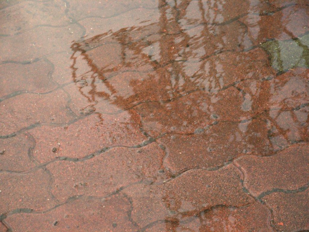 RainyTime67-3.jpg