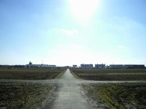 Road8-2.jpg