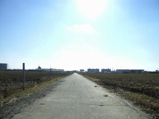 Road8.jpg