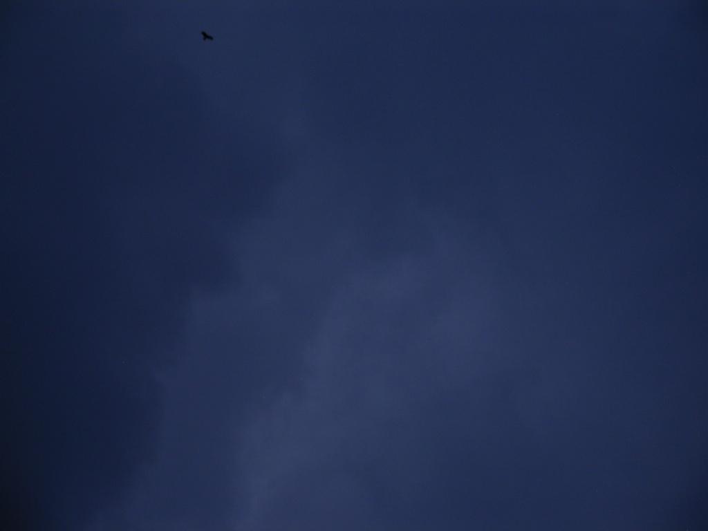 SkyDay103.jpg
