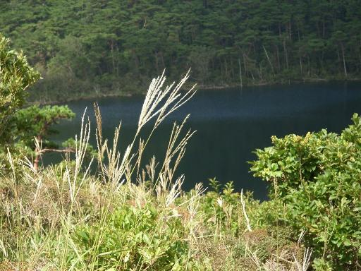 えびの高原、白紫池