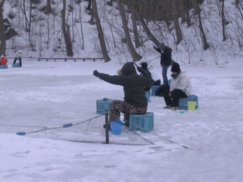 函館大沼 太公園 ワカサギ釣り2