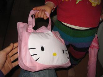 kittybag100324.jpg