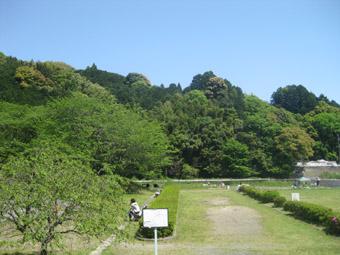 midoriyutaka2100503.jpg