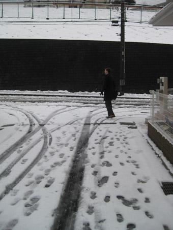 snow5100202.jpg