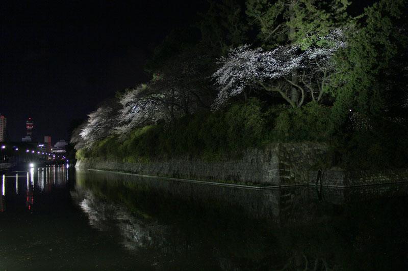 中堀ライトアップ1 120330