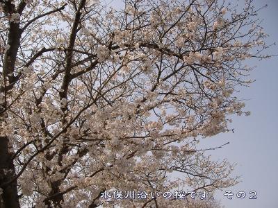 s-kawazoi02.jpg