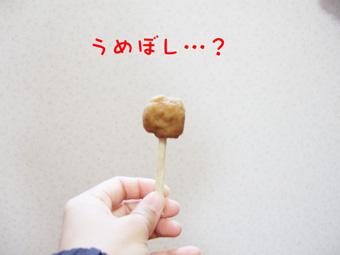 2007_01190017.jpg