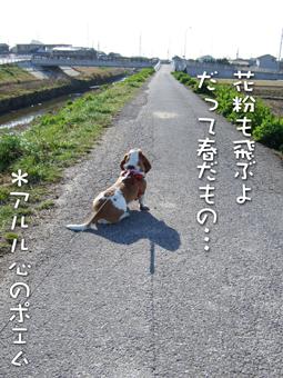 2007_02280009.jpg