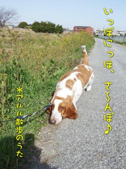 2007_03170017.jpg