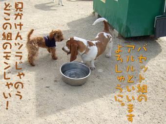 2007_05270012.jpg