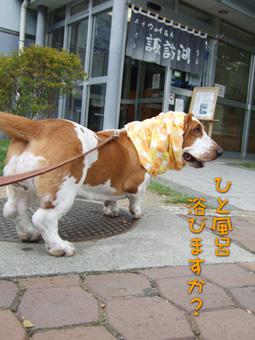suwako-onsen