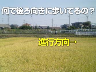 VFSH0051.jpg