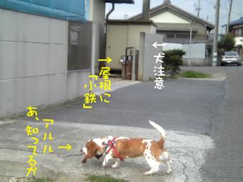VFSH0074.jpg