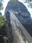 遺跡を上がる階段