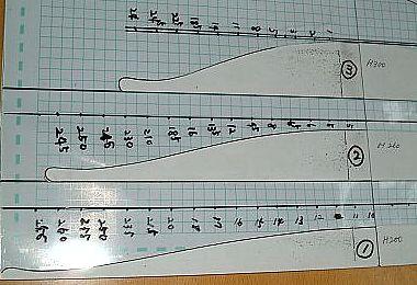 bauts-scale1.jpg