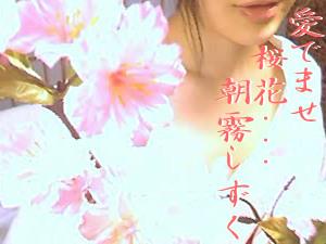 愛でませ桜花