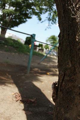 2008_08_18_b.jpg