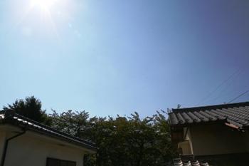 コピー ~ IMG_0519