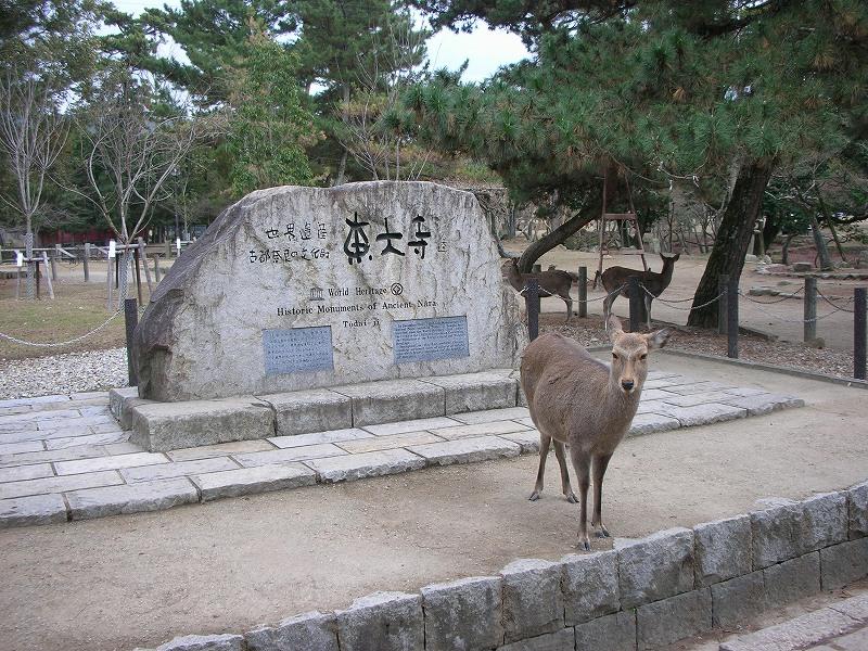 世界遺産記念碑&鹿