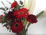 お店からのお花