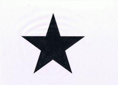 星型妻飾り デザイン画