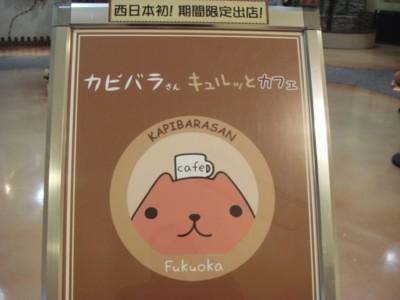 カピバラさんキュルっとカフェin福岡