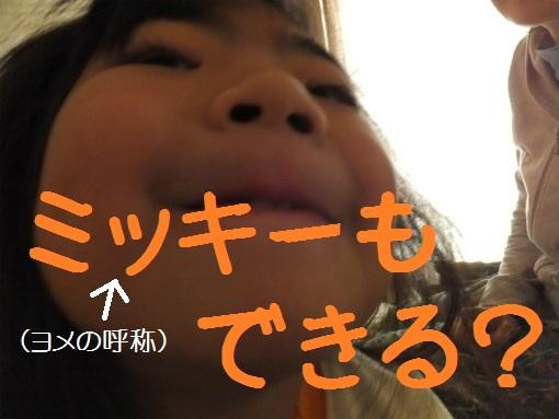 blog12020110.jpg