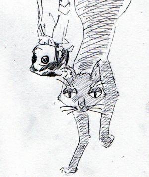 イケメン黒ネコ