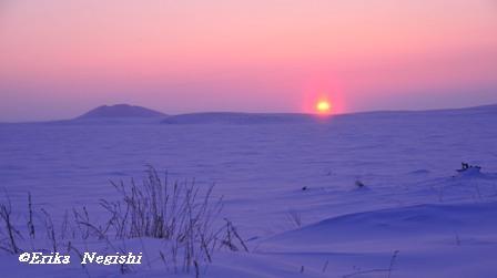 北極海の夕日