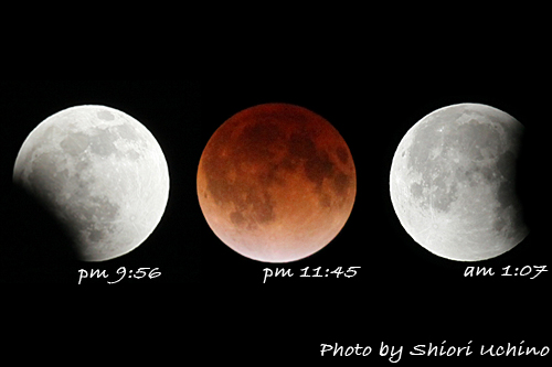 皆既月食2011