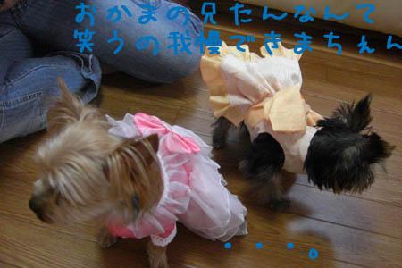 お姫様ゴッコ6